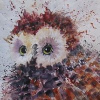 Owl_J_Manning by Jacquie Manning