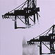 Cranes--Burrard Inlet by Susan Gransby