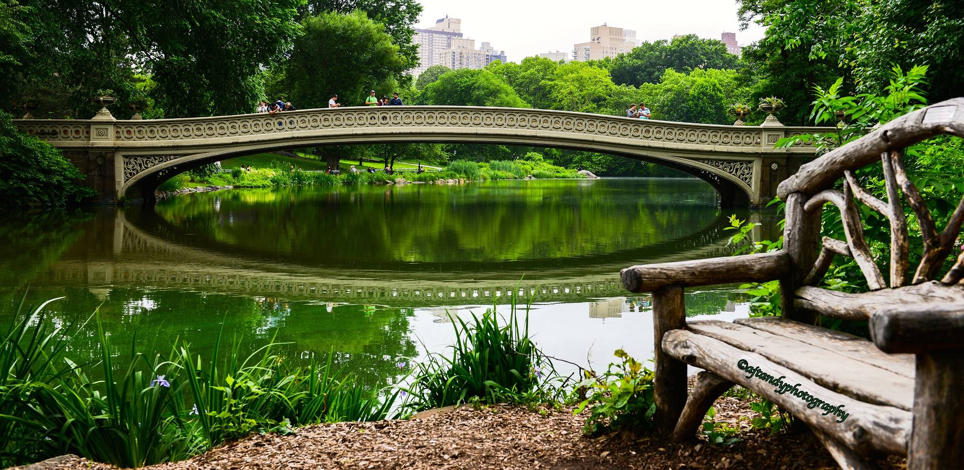 Central Park,NYC by Andy Humphrey