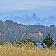SAN FRANCISCO WITH ANGEL ISLAND by Joeann Edmonds-Matthew