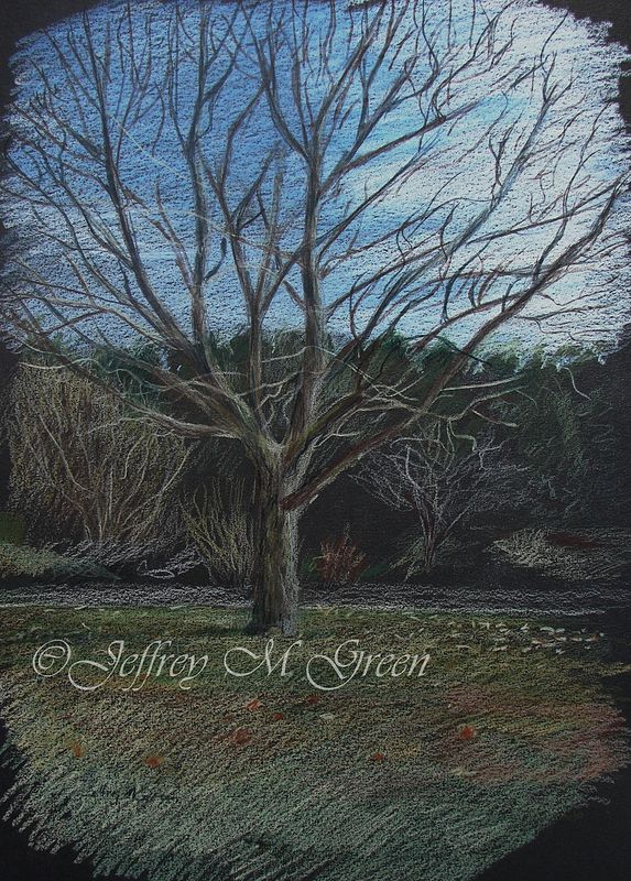 "16 x 20"", colored pencils. Plein air drawing on black art board. by Jeffrey Green"