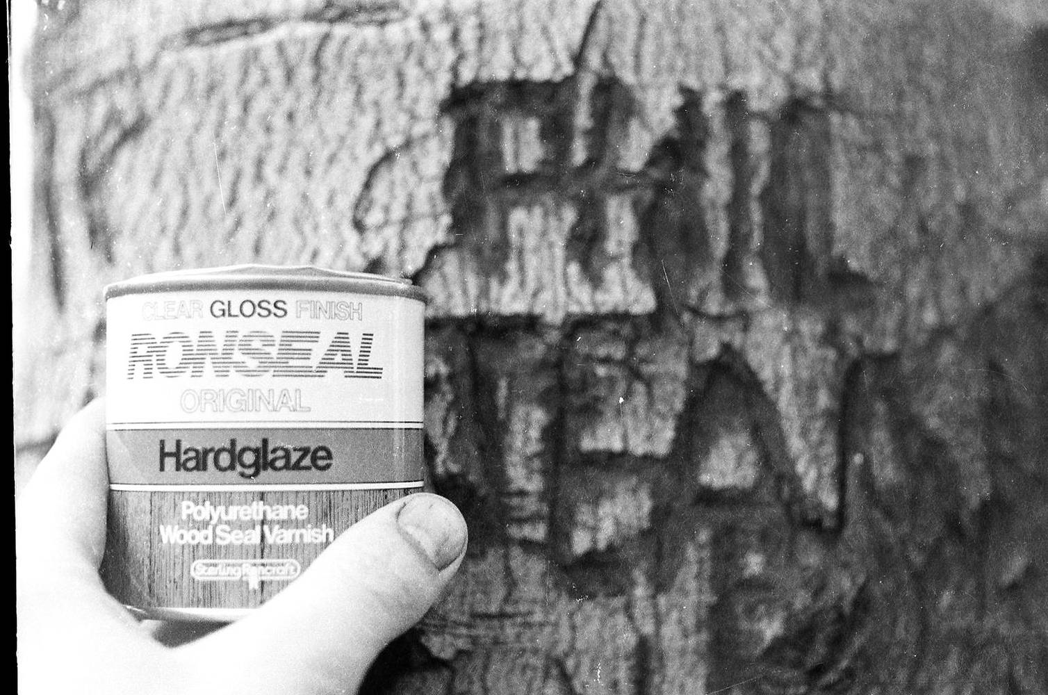 Tree Healing (Ronseal) by Ron Crowcroft