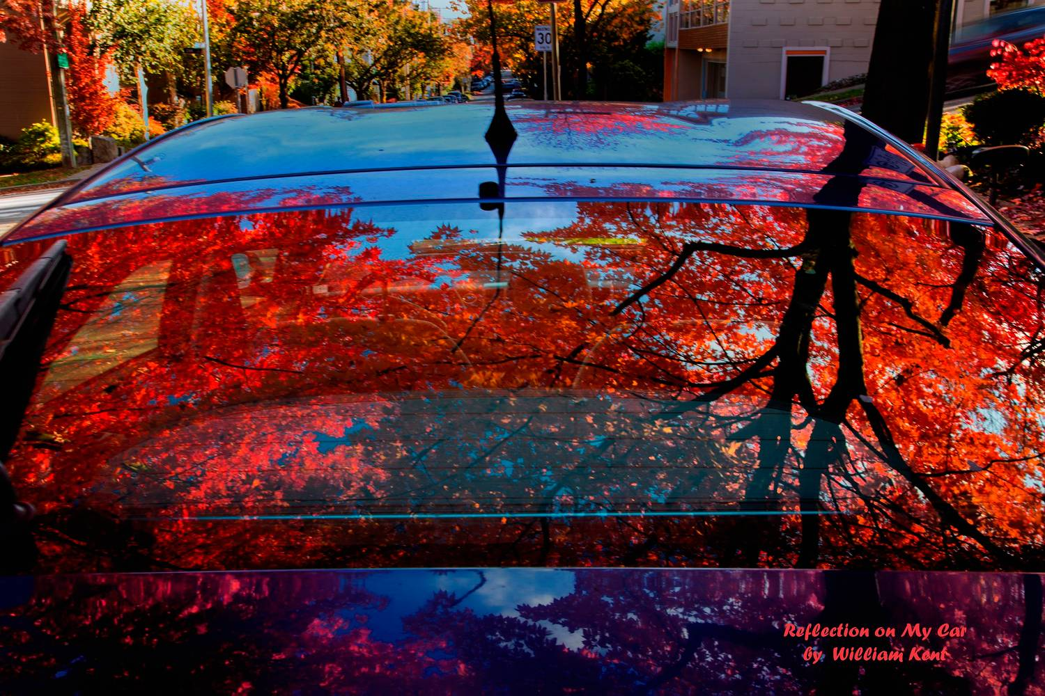 Reflection on My Car by William Kent
