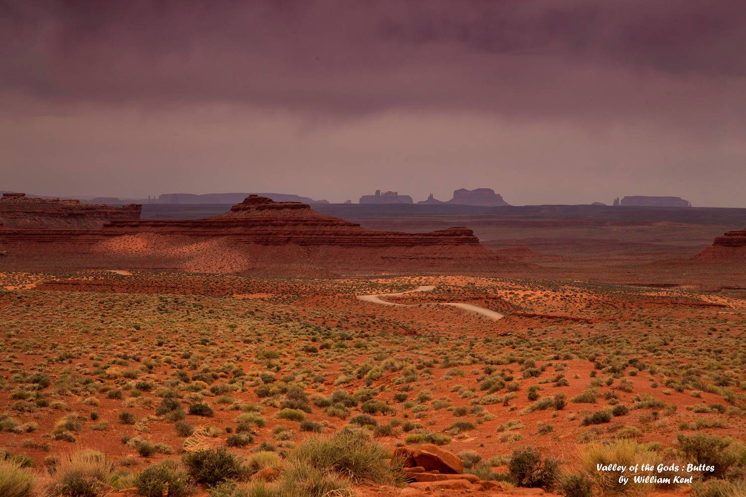 Valley of the Gods _ Buttes on Horizon by William Kent