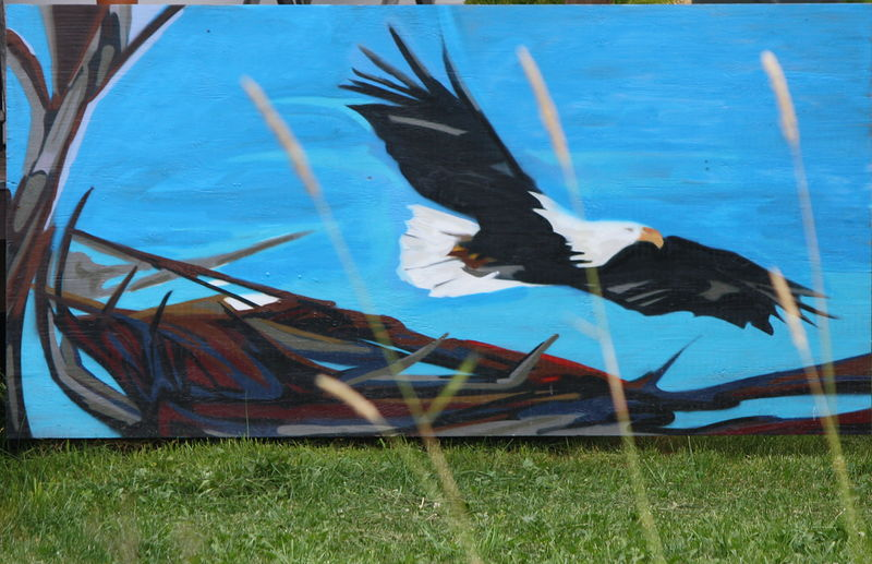 Painting Eagle by Sharon  Hunter