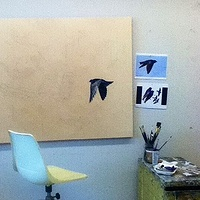 ten purple martins sketched out along with security cameras by Belinda Harrow