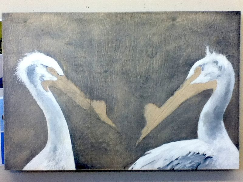 """Navy Stare"" underway with background and bird's featured bodies complete by Belinda Harrow"
