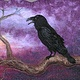 The Raven by Valerie Johnson