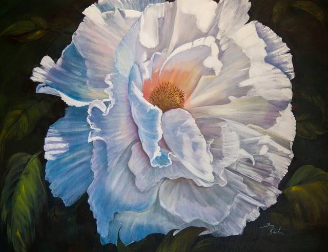 Acrylic painting White Peony  by Bev Robertson