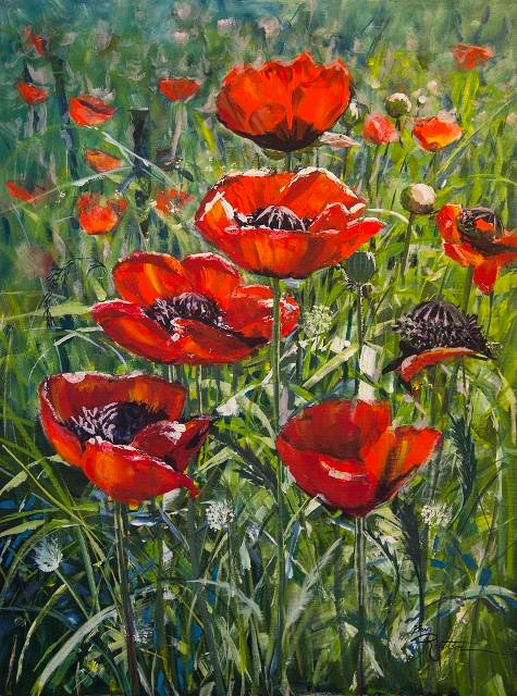 Acrylic painting Wild Poppies  by Bev Robertson