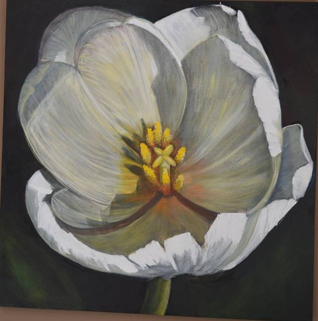 Acrylic painting Wedding Tulip  by Bev Robertson