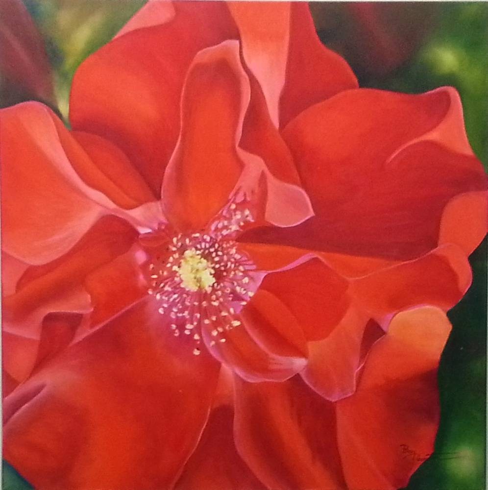Oil painting  Red Red Rose by Bev Robertson