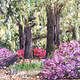 Oil painting Savannah Spring by Yvonne Shaffer
