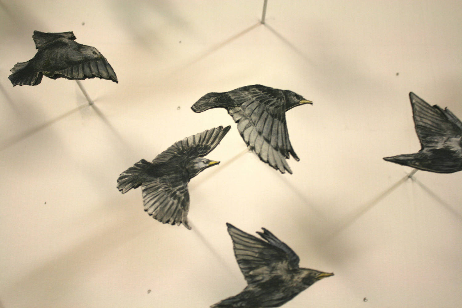 3D Flock (detail) by Nicole Walters