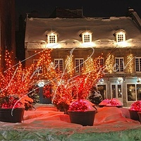 #YUL17 - Place Jacques-Cartier by Ivan Petrov