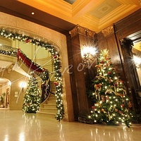 #YUL19 - Chateau Frontenac at Christmas #1 by Ivan Petrov