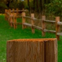 Meandering Fence by William Kent