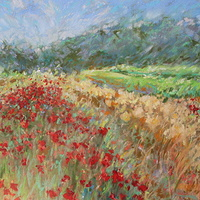 Cotignac Poppies detail by Lisa Printz