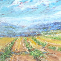 Chemin de Lac Vineyard by Lisa Printz