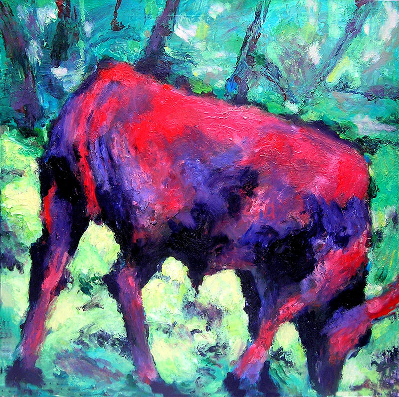 Hereford calf 2 - Oil on Canvas, 122cm x 122cm by Jude Hotchkiss