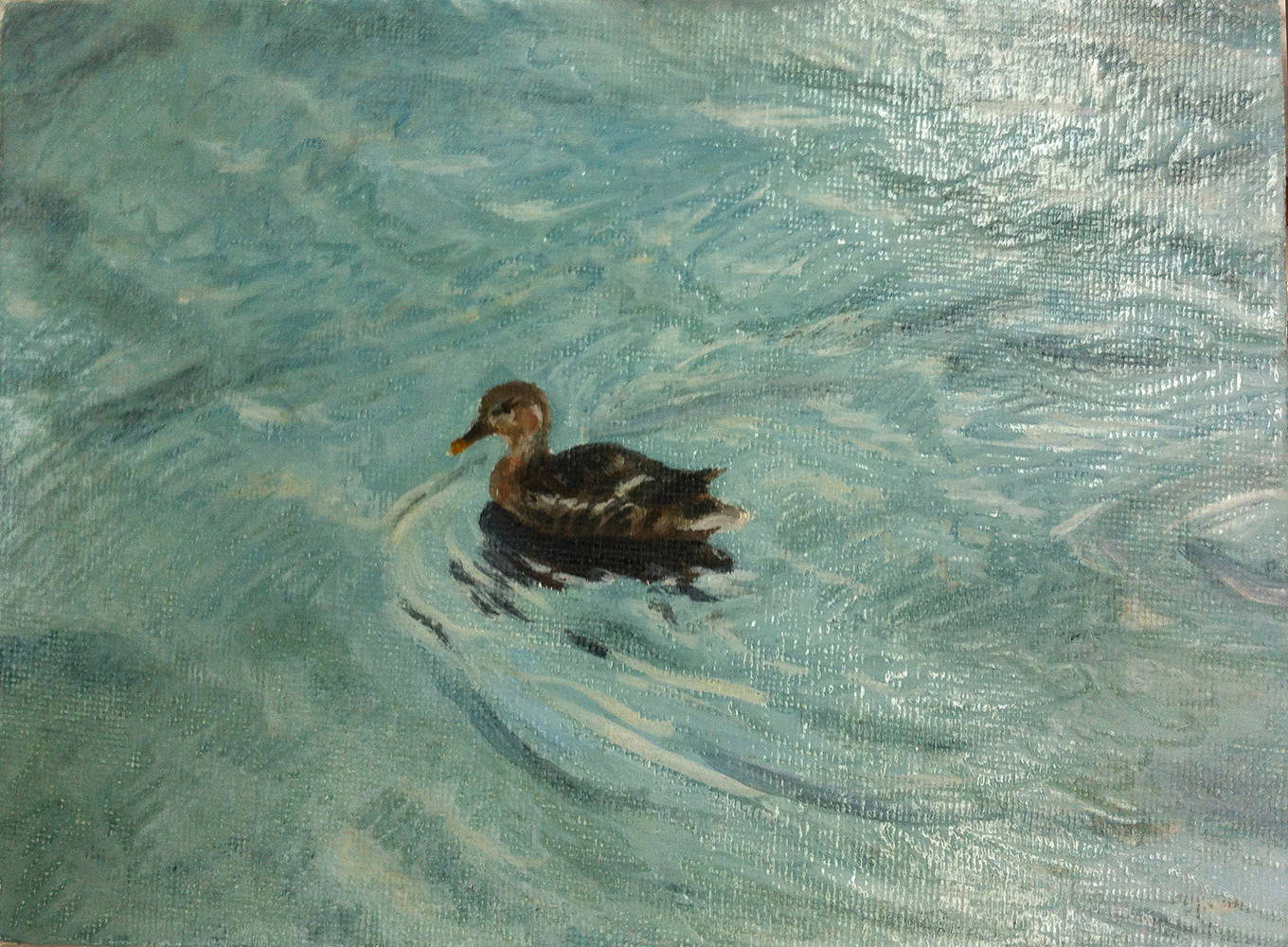 Oil painting Small Duck on Rippling Water by Anastasia O'melveny
