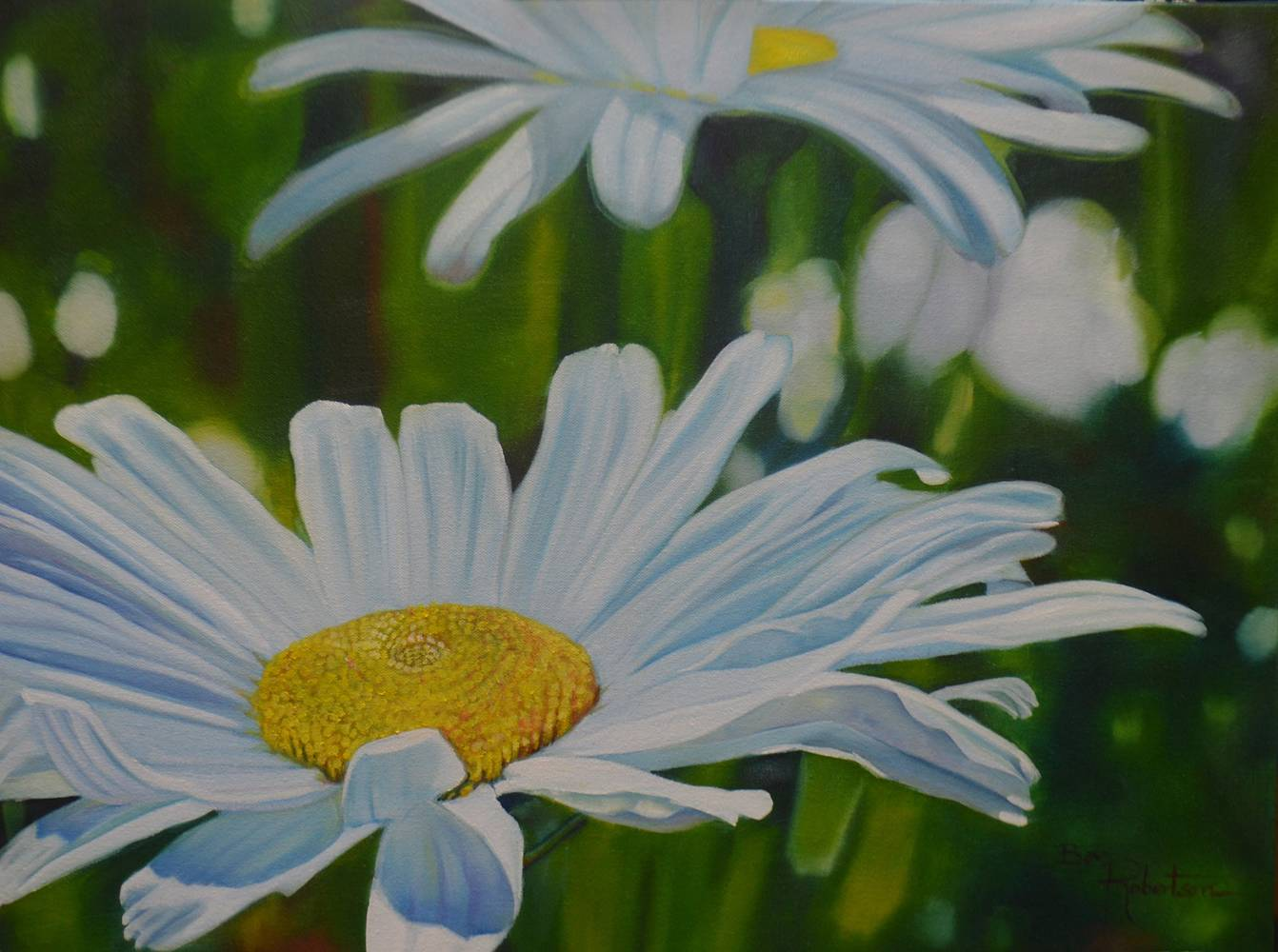 Oil painting Daisy,Daisy.... by Bev Robertson