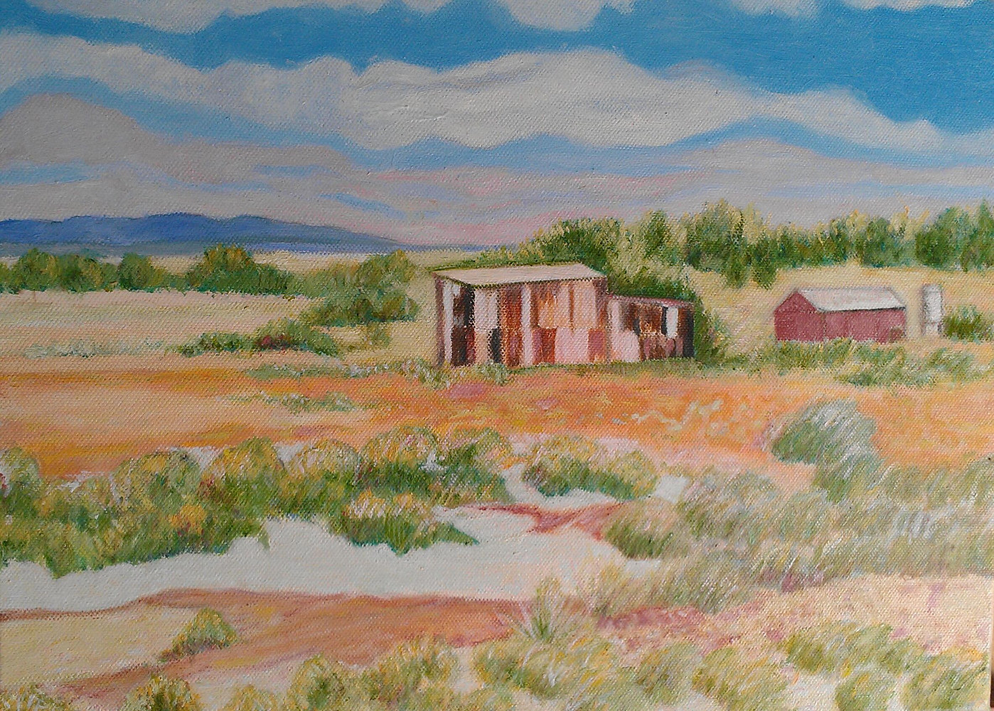 Oil painting The Old Shed, Somewhere near Port Pierie by Gwenda Branjerdporn