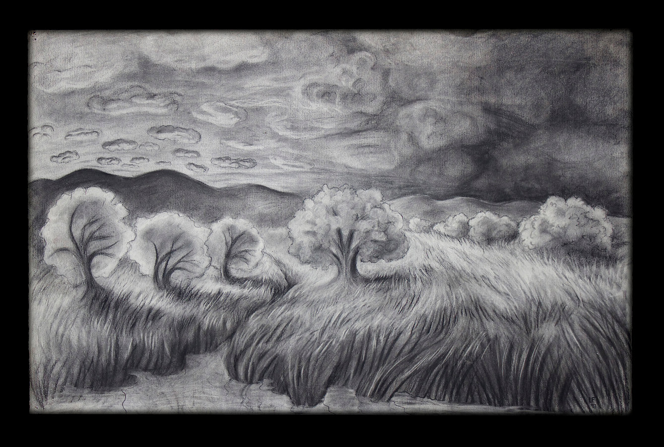 Evening in the Fields, charcoal on paper, 23 x 36 in, Laurey Foulkes by Laurey  Foulkes