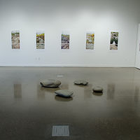 A Window Through Time - Installation View by Troy Nickle