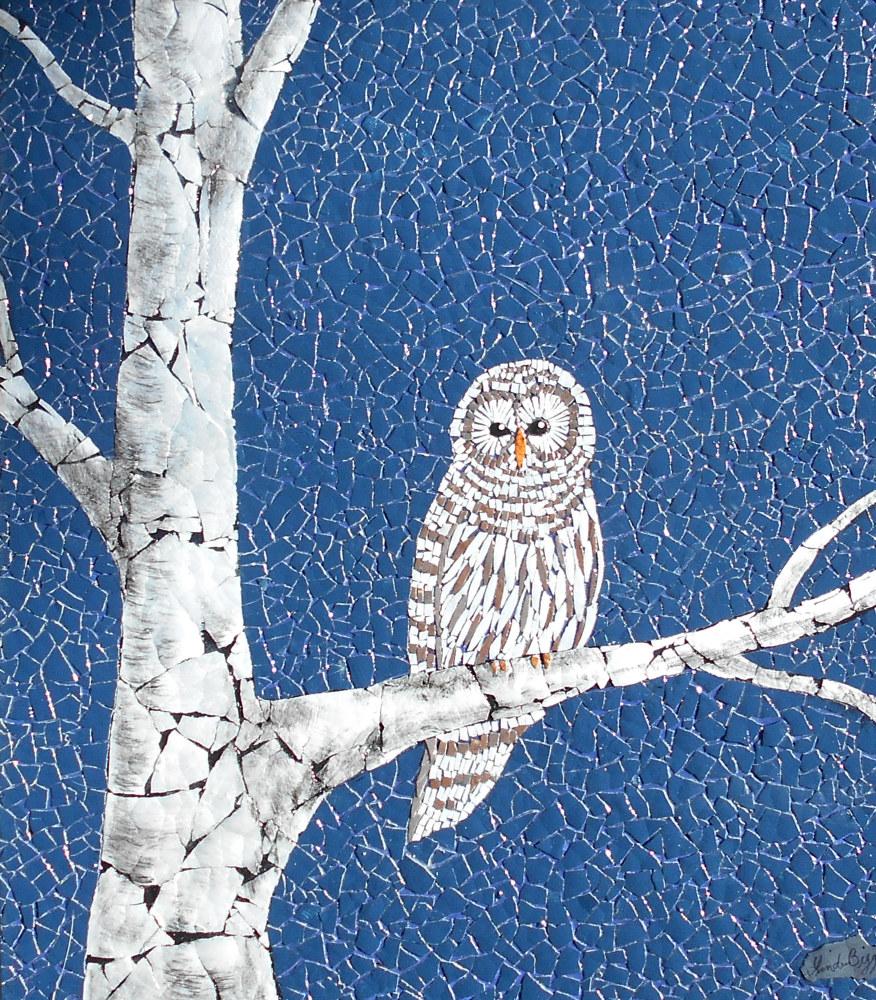 The Barred Owl by Linda Biggers