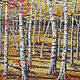 Autumn Birches by Linda Biggers