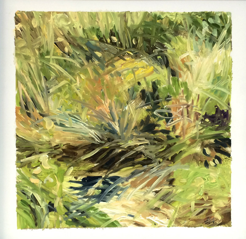 Oil painting Grass #1: Grassland National Park West Block by Edie Marshall