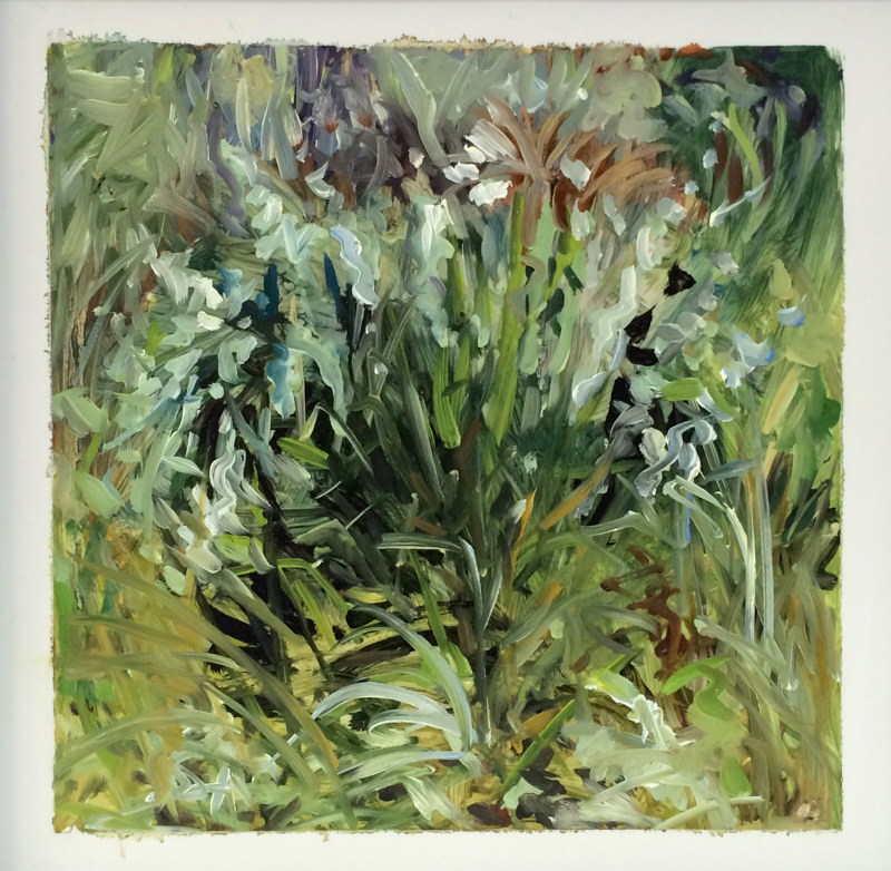 Oil painting Grass #5: Grasslands National Park West Block by Edie Marshall