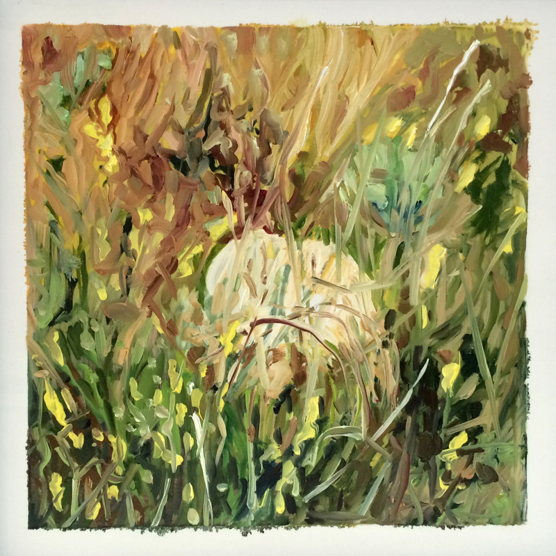 Oil painting Grass #9: Grasslands National Park West Block by Edie Marshall