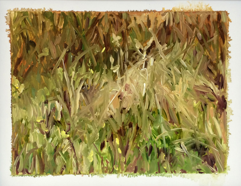 Oil painting Grass #11: Grasslands National Park West Block by Edie Marshall