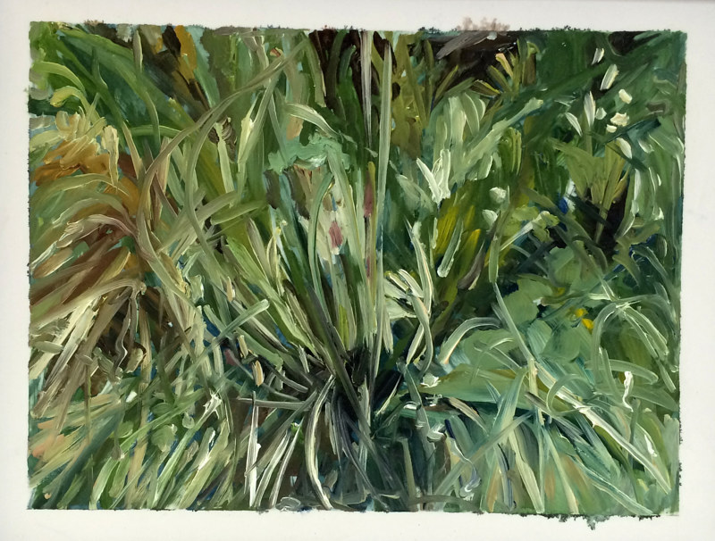 Oil painting Grass #12: Grasslands National Park West Block by Edie Marshall