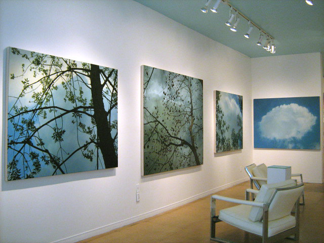 Installation View by Renee Duval