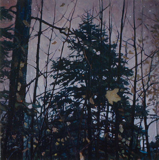 Oil painting Nacht Spruce  by Renee Duval