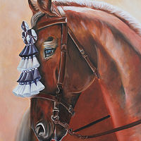 Photography The Show Horse by Debbie Hart