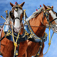 Best Buds - Clydesdales by Debbie Hart