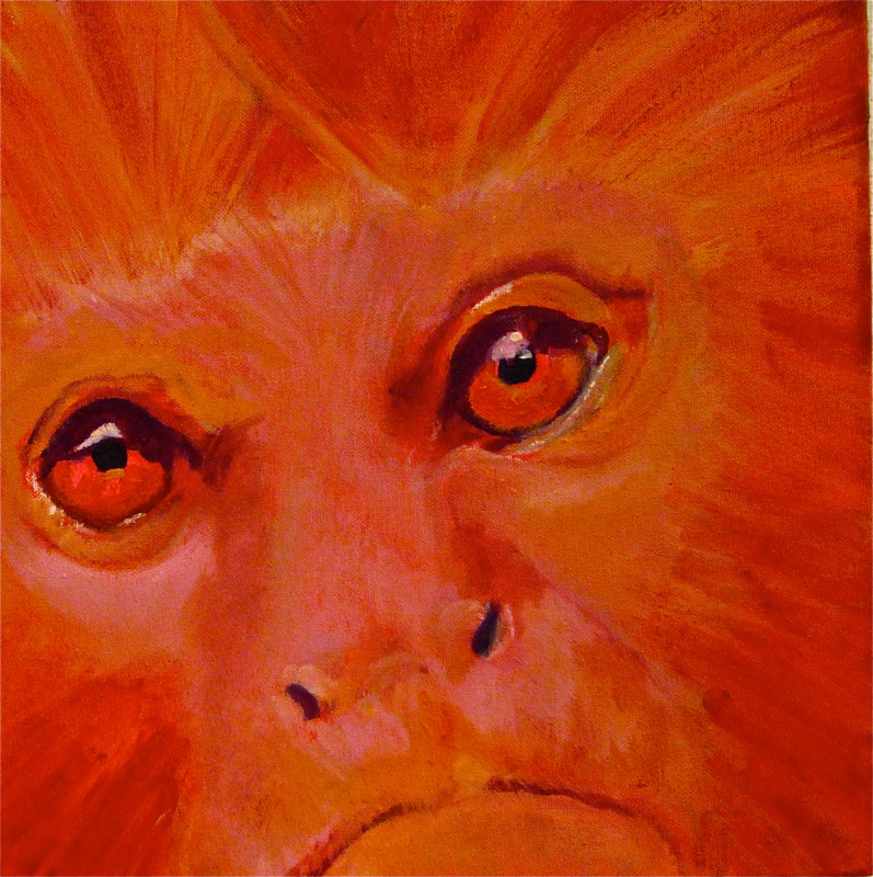 Oil painting Golden Monkey by Frederica  Hall