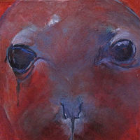 Oil painting The Caribbean Monk Seal Extinct by Frederica  Hall