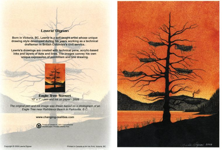 Eagle Tree Sunset by Lawrie  Dignan