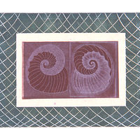 Double Spiral by Mary Crockett