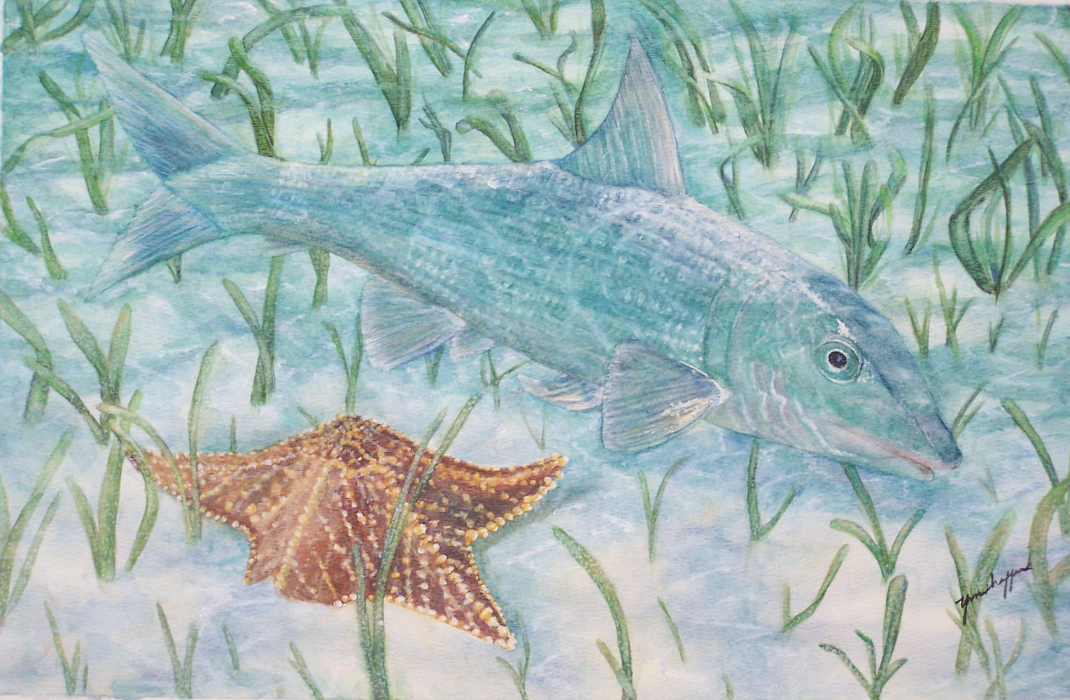 Bonefish by Yvonne Shaffer
