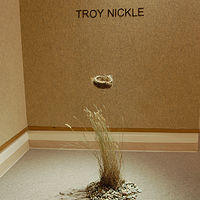 Untitled by Troy Nickle