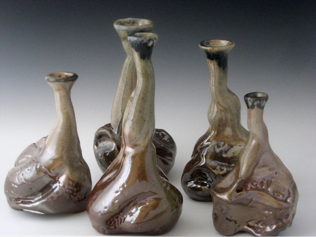 Bird Vases  by Sharon V Smith