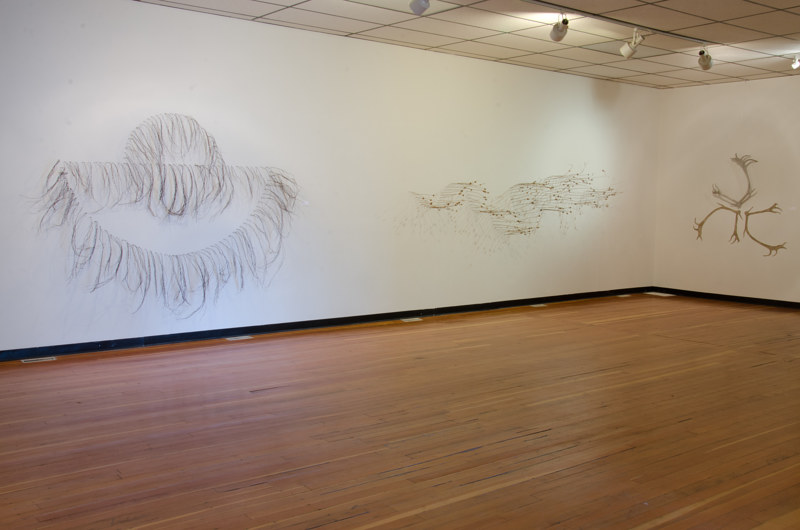 Installation view of Nature and Artifice by Troy Nickle