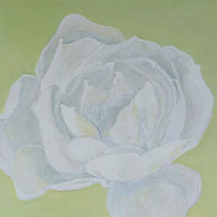 Acrylic painting White Rose by Gwenda Branjerdporn