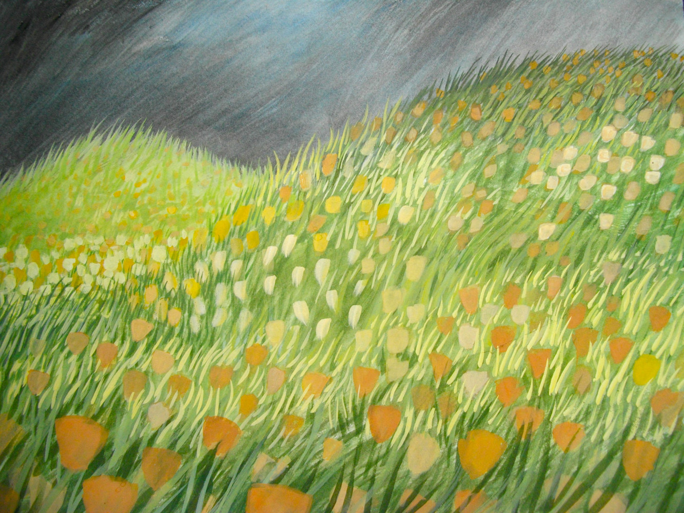 Poppy Field, gouache, 2009 by Laurey  Foulkes